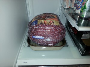 turkey thaw