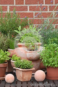 herbs-pots-garden-decorations-33439875