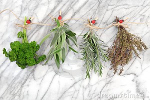 herbs-hanging-drying-parsley-sage-rosemary-thyme-string-line-ladybird-pegs-over-marble-background-34354607