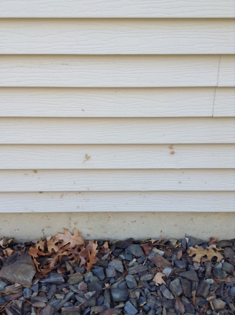 Cleaning Your House Siding Answerline Iowa State