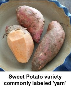 sweet-potato-a