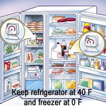 refrigerator graphic