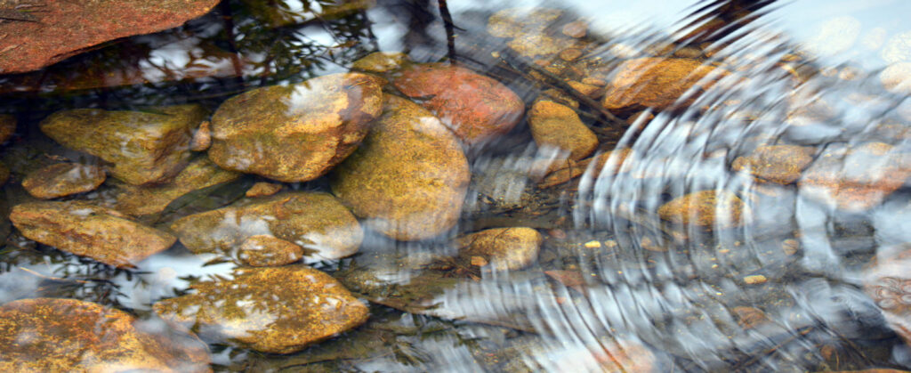 Creek with water and rocks